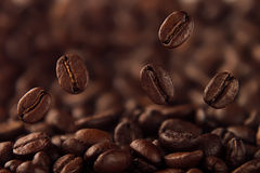 Falling coffee bean on background of heap of roasted beans. Royalty Free Stock Photos