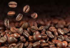Falling coffee beans Royalty Free Stock Photography