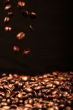 Falling coffee beans close up over black background Royalty Free Stock Images