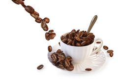 The falling coffee beans in a cup Stock Images