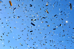 Falling confetti in the city festival Stock Images