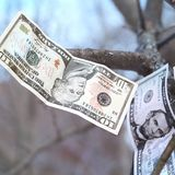 Falling Currency Royalty Free Stock Photos