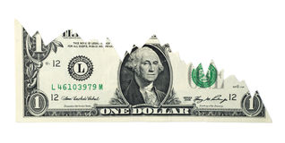 Falling Dollar Chart. Isolated U.S. dollar chart on a white background Stock Photos