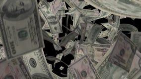 Falling Dollars stock video
