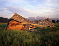 Falling Down Barn. A barn that has fallen down in Grand Teton National Park stock photography
