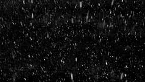Falling down snowflakes. Isolated on black background stock video footage