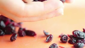 Falling dried cranberries in clow motion healthy. Snack hands stock video