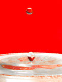 Falling droplets of water over red Stock Images
