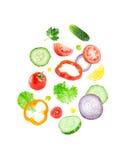 Falling fresh vegetable slices. On white background Stock Image