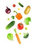 Falling fresh vegetables Stock Images