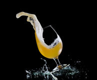 Falling glass of beer Royalty Free Stock Photography