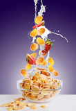 Falling Gold Corn Flakes And Strawberry With Milk Stock Images