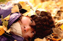 falling into the golden gingko leaves Stock Photography