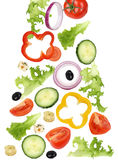 Falling green salad with tomatoes, onion, olives and cucumber Royalty Free Stock Image