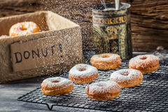 Falling icing sugar on fresh donuts Royalty Free Stock Photography
