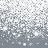 Falling large snow on a transparent background Stock Photos