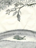 Falling leaf Stock Image