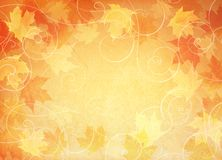 Falling leaf background. Royalty Free Stock Photos