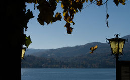 Falling leaf over the Orta lake royalty free stock photography