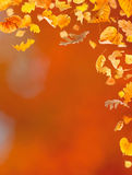 Falling Leaves. Against the autumn background Royalty Free Stock Photo