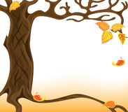Falling leaves. Illustration of the autumnal falling of the leaves Stock Photos