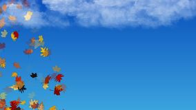 Falling leaves. Animation of colorful autumn leaves falling stock video