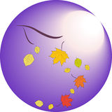 Falling leaves in autumn on a background of moonlight. Falling red and yellow leaves in autumn on a background of moonlight Stock Image