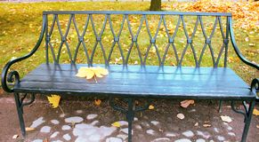 Falling leaves. Autumn in city Park in yellow leaves. Yellow maple leaves on garden bench, sad mood of past summer royalty free stock photos
