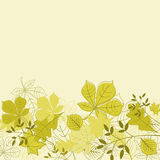 Falling leaves background Stock Images