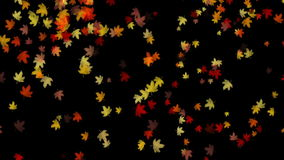 Falling Leaves background. Falling Leaves falling background color stock video