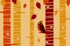 Falling Leaves and Cardinal Stock Photography