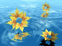 Falling Leaves in Water. A beautiful illustrated background showing autumn leaves falling in water Stock Photography