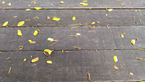 Falling leaves on the wooden terrace. Background royalty free stock photography