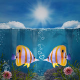 Falling in love. Two fishes and water hearts Stock Images