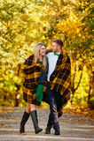 Falling in love autumn Stock Images