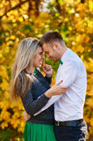 Falling in love autumn. skittish couple Royalty Free Stock Images