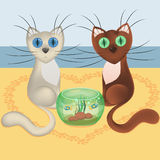 Falling in love cartoon cats, beach of sea, heart from trace of cat paw footprints, aquarium, vector, eps10. Falling in love cartoon cats, beach of sea, heart Royalty Free Stock Photos