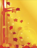 Falling Maple Leaves in Forest Illustration Stock Photography