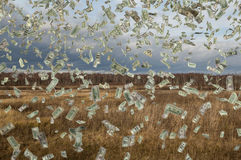 Falling money on field. Falling money on the field, close up Royalty Free Stock Photography