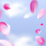 Falling pink petals in the sky. Vector illustration. Royalty Free Stock Photo