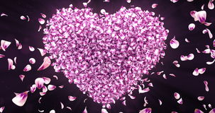 Falling Pink Rose Sakura Flower Petals In Lovely Heart Shape Background Loop 4k stock footage