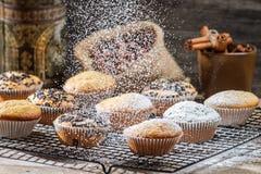 Falling powder sugar on vanilla muffins Royalty Free Stock Photography