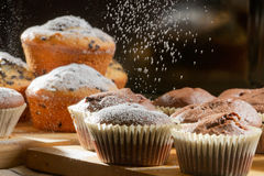 Falling powdered sugar on chocolate muffin Stock Photography