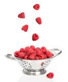Falling Raspberries Stock Image
