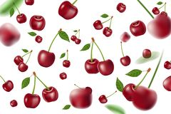 Falling realistic ripe cherry elements. Realistic red cherry with leaves background isolated on white. 3d Vector. Falling realistic ripe cherry elements stock illustration