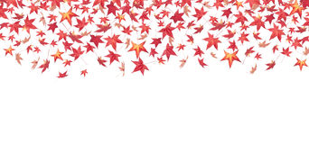 Falling red autumn leaves. Isolated on white royalty free stock photography