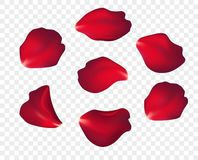 Free Falling Red Rose Petals Isolated On White Background. Vector Illustration Stock Images - 136167794