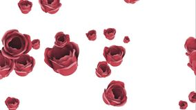 Falling red roses on a white background royalty free illustration