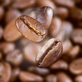 Falling roasted coffee beans Royalty Free Stock Photos