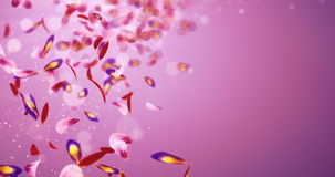 Falling Romantic Red Pink Purple Flower Petals Blurry Bokeh Placeholder Loop 4k stock video footage